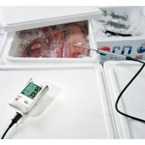Testo 175 T2 - 2 kanałowy rejestrator temperatury